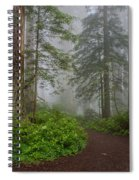 Redwoods Rising In Fog Spiral Notebook