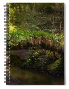 Reelig Bridge And Grotto Spiral Notebook