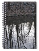 Refection Spiral Notebook