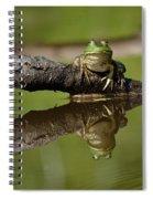 Reflecktafrog Spiral Notebook