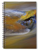 Reflected Autumn Color Spiral Notebook