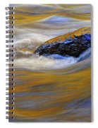 Reflected Color Spiral Notebook