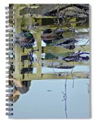 Reflected In A Memory Spiral Notebook