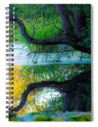 Reflected Tree In Pastel Landscape Spiral Notebook