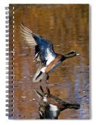 Reflecting Duck Spiral Notebook