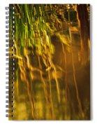 Reflecting On A Summer Morn Spiral Notebook