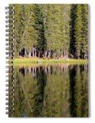 Reflections Along Summit Lake Spiral Notebook