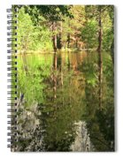Reflections In The Merced Spiral Notebook