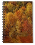 Reflections Of Autumn Spiral Notebook