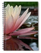 Reflections Of Summer Spiral Notebook