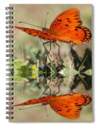 Reflections Of The Gulf Spiral Notebook