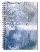 Reflections Of Winter Spiral Notebook