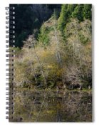Reflections On Marshall Pond Spiral Notebook