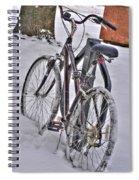 Regardless Spiral Notebook