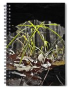 Regrowth Spiral Notebook