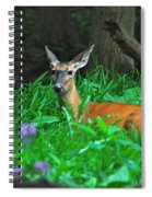 Relaxing In The Morning Spiral Notebook