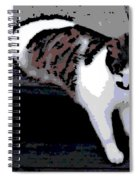 Relaxing On The Steps Spiral Notebook