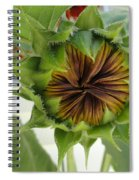 Reluctant To Bloom Spiral Notebook