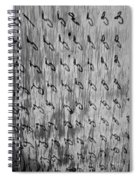 Repetition To Variation 1b Spiral Notebook