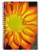 Resplendent Beauty Spiral Notebook