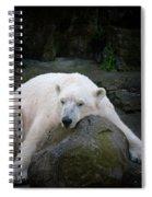 Resting Polar Spiral Notebook
