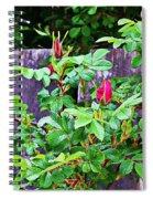 Resting Rosebuds Enhanced Spiral Notebook