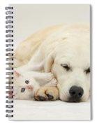 Retriever With Friendly Kittens Spiral Notebook