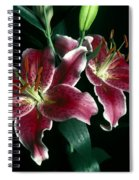Reuben Lillies Spiral Notebook
