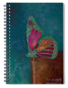 Reve De Papillon - S04bt02 Spiral Notebook