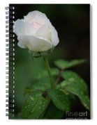 Reverence And Humility Spiral Notebook