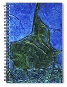 Rhapsody Of Colors 47 Spiral Notebook
