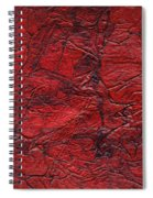 Rhapsody Of Colors 59 Spiral Notebook