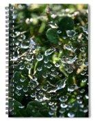 Rhinestone Diamonds Spiral Notebook