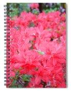 Rhodies Art Prints Pink Rhododendrons Floral Spiral Notebook