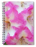 Rhododendron- Hot Pink Spiral Notebook