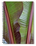 Ribbed Spiral Notebook