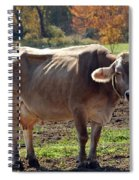 Ribs On A Skinny Cow Spiral Notebook