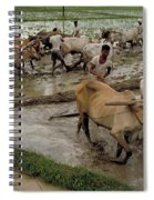 Rice Cultivation Spiral Notebook