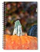 Rich Autumn Colors Spiral Notebook