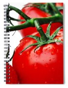 Rich Red Tomatoes Spiral Notebook