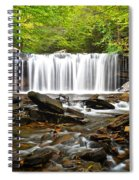 Ricketts Glen Waterfall Oneida Spiral Notebook