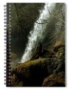 Rifle Falls IIi Spiral Notebook