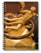 Rink Guard Spiral Notebook