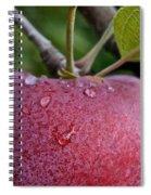 Ripe N Ready Spiral Notebook