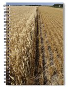 Ripened Wheat And Stubble In Saskatchewan Field Spiral Notebook