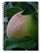 Ripening Progress Spiral Notebook