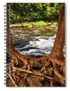 River And Roots Spiral Notebook