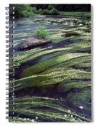 River Bandon, County Cork, Ireland Spiral Notebook