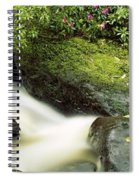 River Flowing Through A Forest, Torc Spiral Notebook