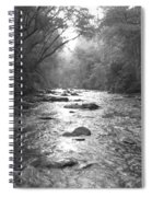 River Gaze Spiral Notebook